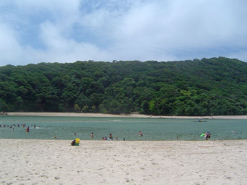 A Tallebudgera Creek experience